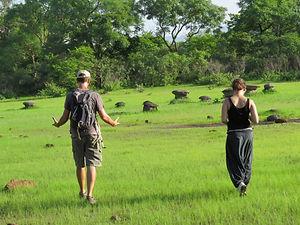Détente à la réserve naturelle de Dindef