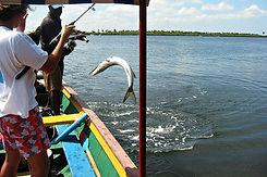 pêche sportive au Cap Skirring en Casama
