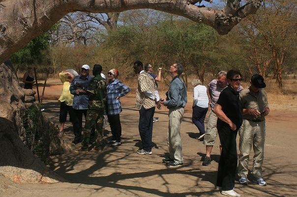 Excursionnistes au Sénégal.jpg