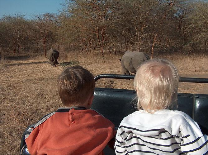 Safari dans la réserve de Bandia au Séné