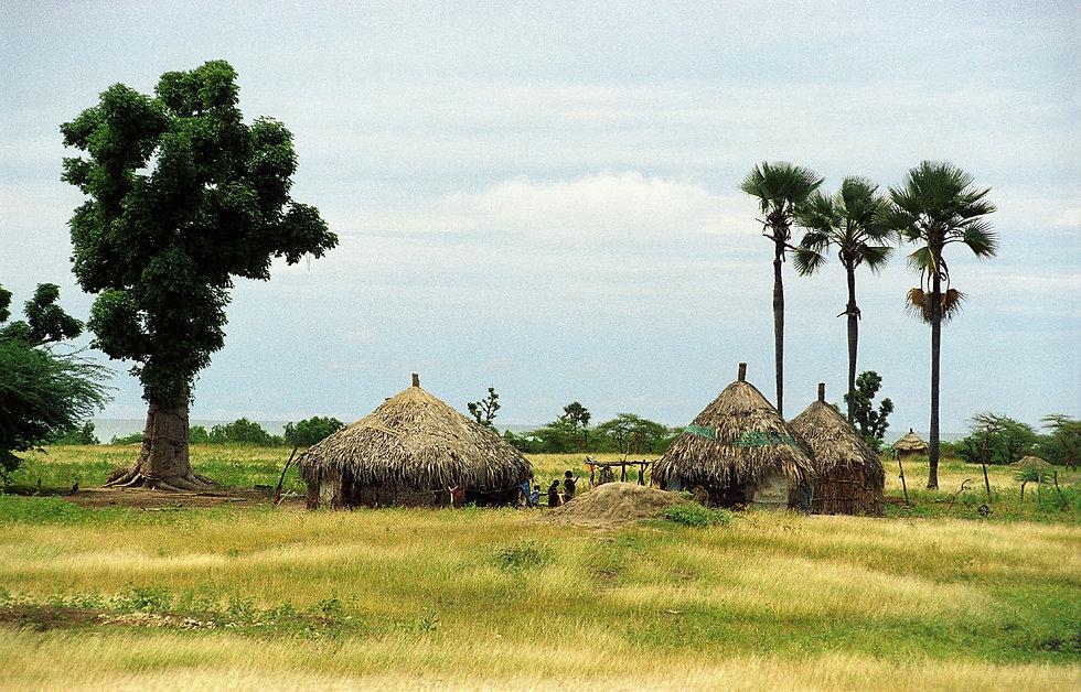 paysage de brousse en Casamance