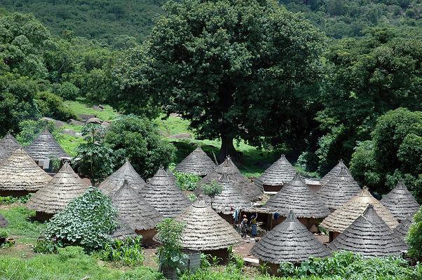 Habitat en pays bassari.jpg
