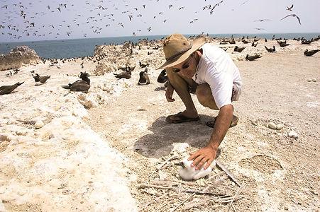Birding au Sénégal - TeralTravel.jpg