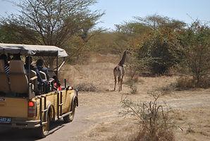 Escapade à la réserve de Bandia