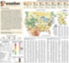 Minneapolis Star Tribune-1.jpg