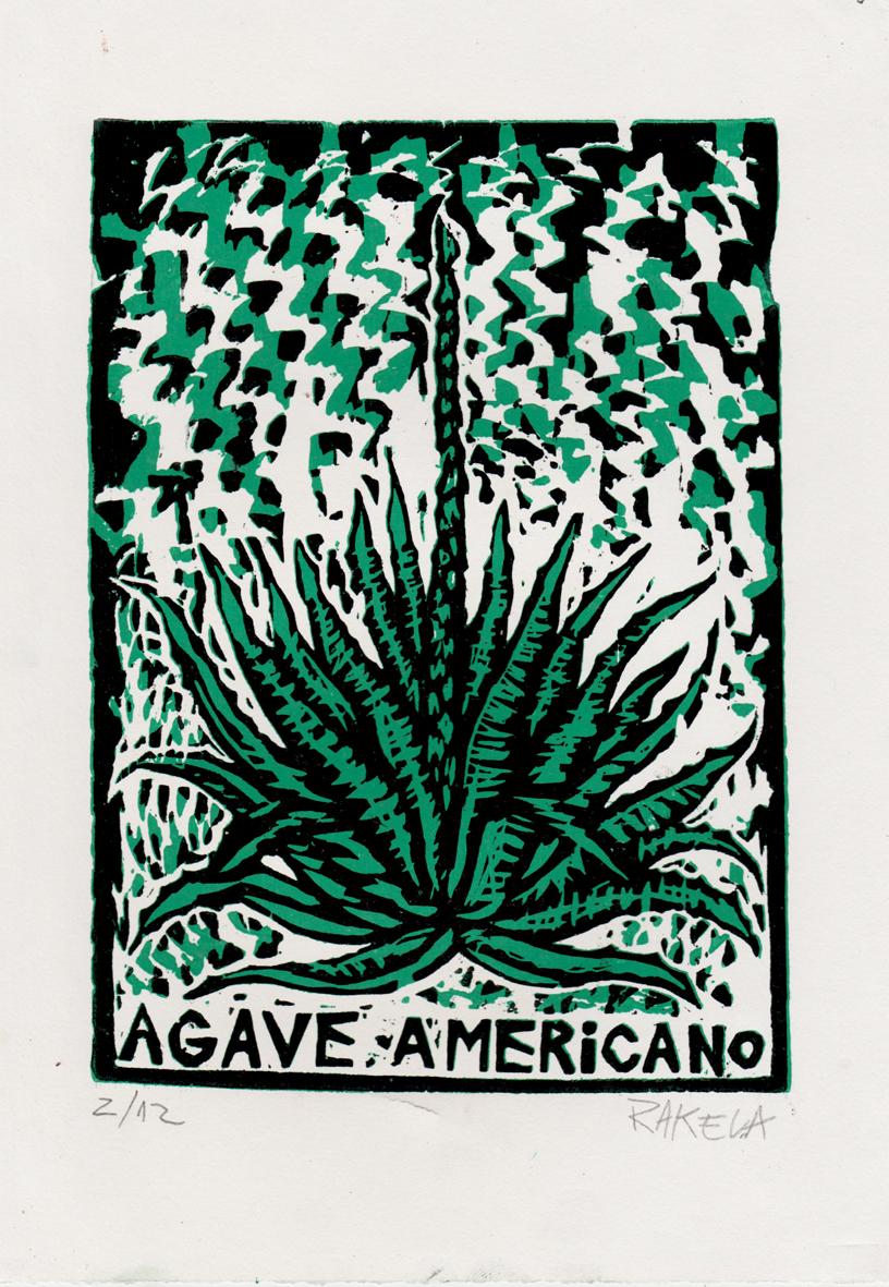 Ágave_Americano,_Xilografía,_Rakela