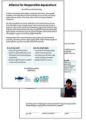 ARA Website Illustrations (7).png