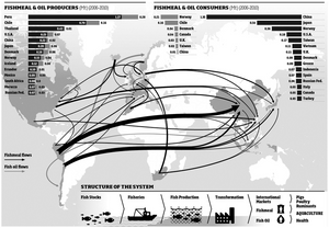 Fishmeal trade network based on import and export data from the International Fishmeal and Oil Organization