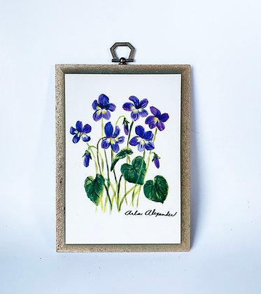 Arla Alexander Art Plaque - Violet Floral