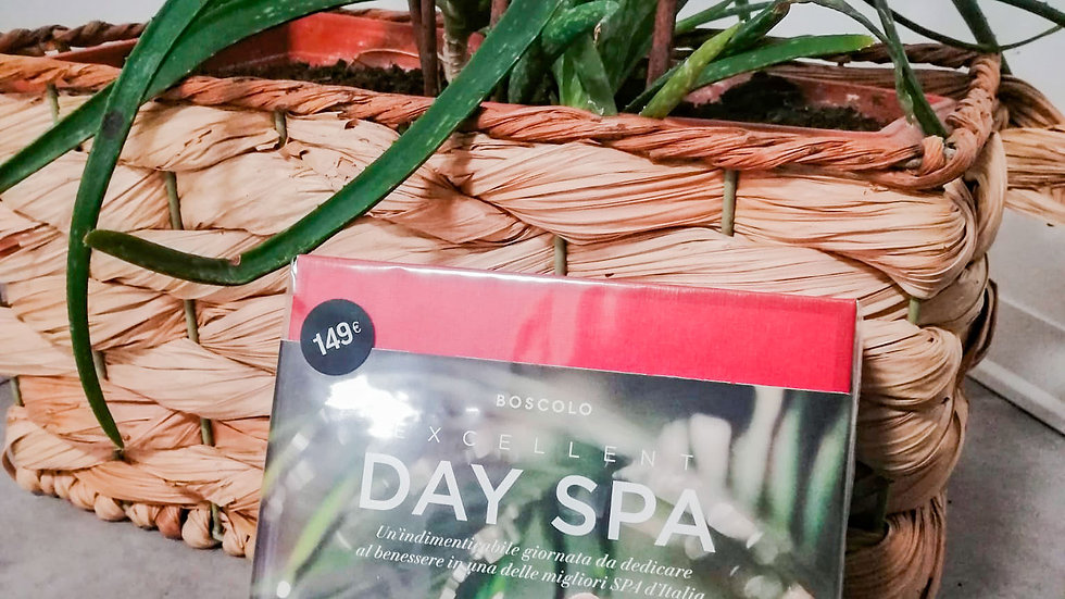 Excellent DAY SPA