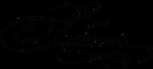 Seducer logo.png