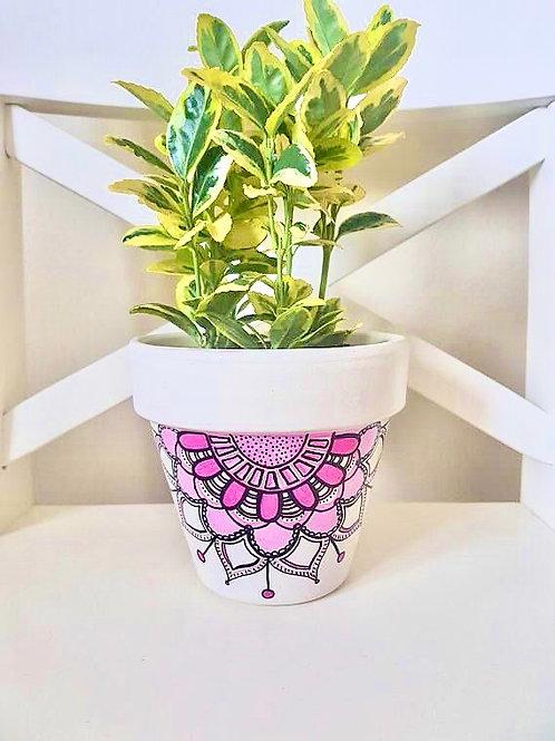 DYO: Flower Pot