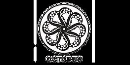 octupus_500X250_08102020.png