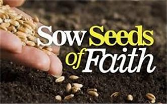 sow-seeds-of-faith jun 13-2021.webp