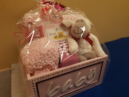Gift Basket-In the Pink (Baby Girl)