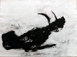 Toro tapé