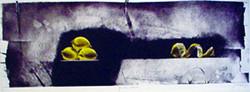 4 Citrons