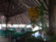 restaurante a Malocas Lodge