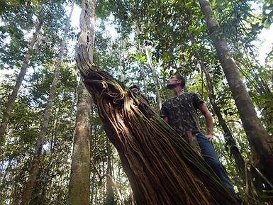 Estencionn Amazonie 5 jours_html_9da1894