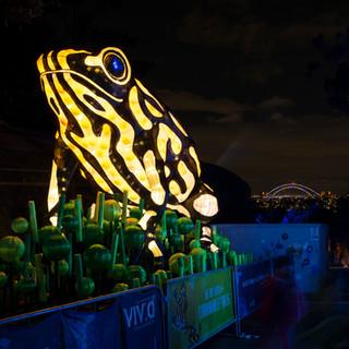 Taronga Zoo Precinct, Vivid Sydney 2017