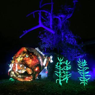Océan en voie d'illumination (Paris 2019)