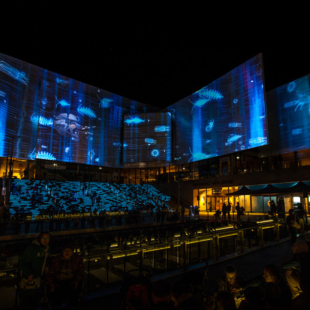 Projection Show