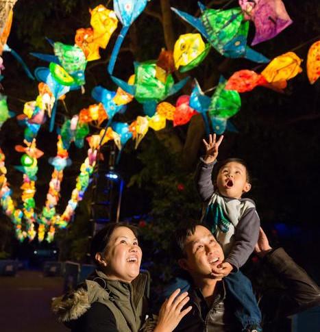 Taronga Children's Lanterns