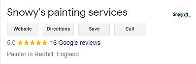Snowy's painting services reviews