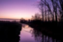 purple sunrise.jpg