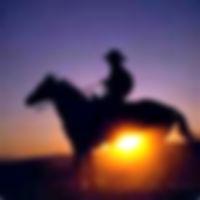 tweetcowboy200.jpg