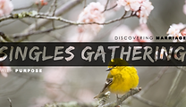 2021 Singles Gathering (Spring design-pl