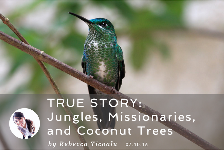 TRUE STORY: Jungles, Missionaries,  and Coconut Trees