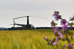 Our stunning airfield