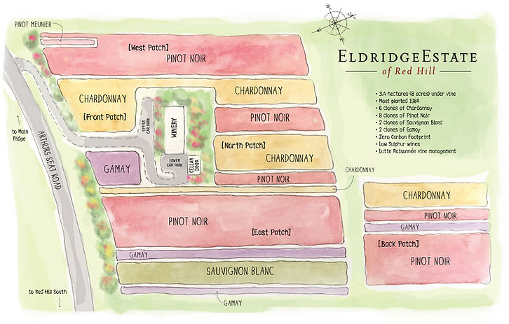 EE watercolour map.jpg