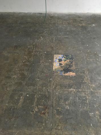 Daisies 2020, archival pigment print on wallpaper, 27 x 35 cm