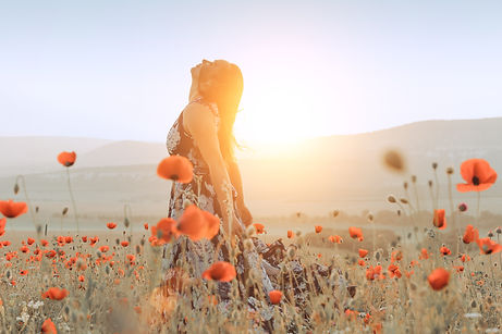 beautiful girl in a poppy field at sunse