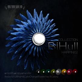 ROZOREGALIA_BiHull_HAIRPIN(G)