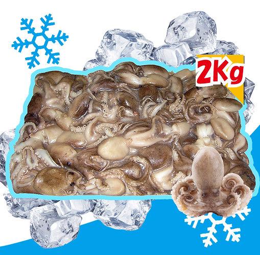 冷凍イイダコ