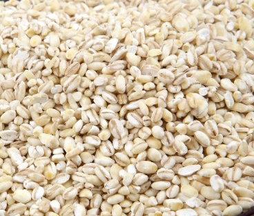 韓国産丸麦  500g