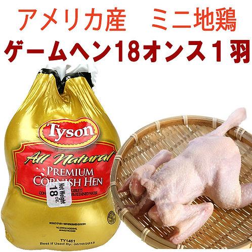 アメリカ産わか鶏