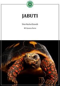 capa-do-livro---jabuti-v1.png