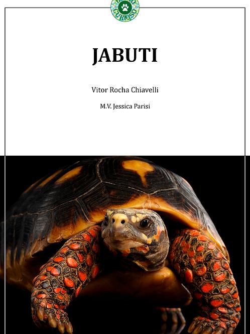 Livro JABUTI