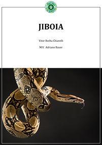 capa-do-livro---2.jpg
