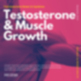 Testosterone Use and gaining muscle size, strength a weight loss