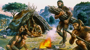Meat, Fire and Evolution: How Barbeque Made Us Human
