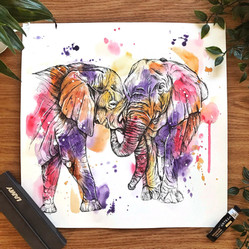 Elephants (Two By Two series)