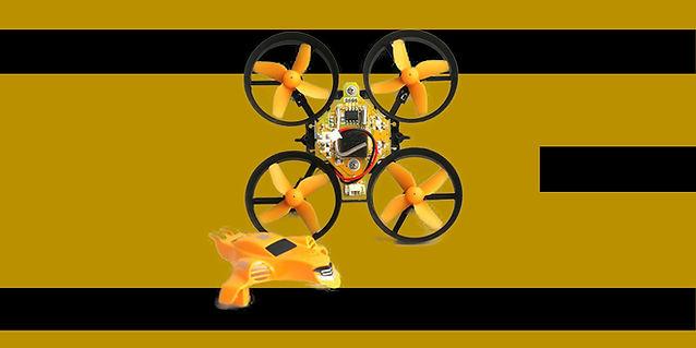 bumblebeeinfo33.jpg