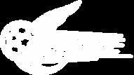 skykick-logo-type2W-500x280.png