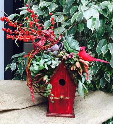 Holiday Succulent Birdhouse Workshop