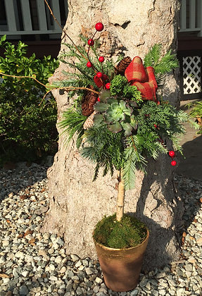 12/5 2:00 pm WORKSHOP  Holiday Topiary Workshop